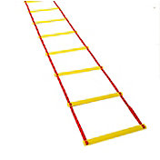 Tandem Volleyball Agility Ladder