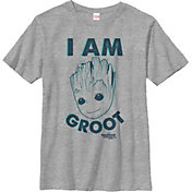 Fifth Sun Boys' Marvel 'The Groot' Graphic T-Shirt